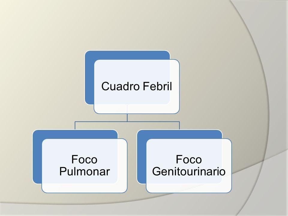 Cuadro Febril Foco Pulmonar Foco Genitourinario