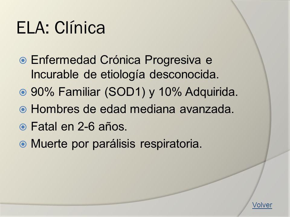 ELA: Clínica Enfermedad Crónica Progresiva e Incurable de etiología desconocida. 90% Familiar (SOD1) y 10% Adquirida.
