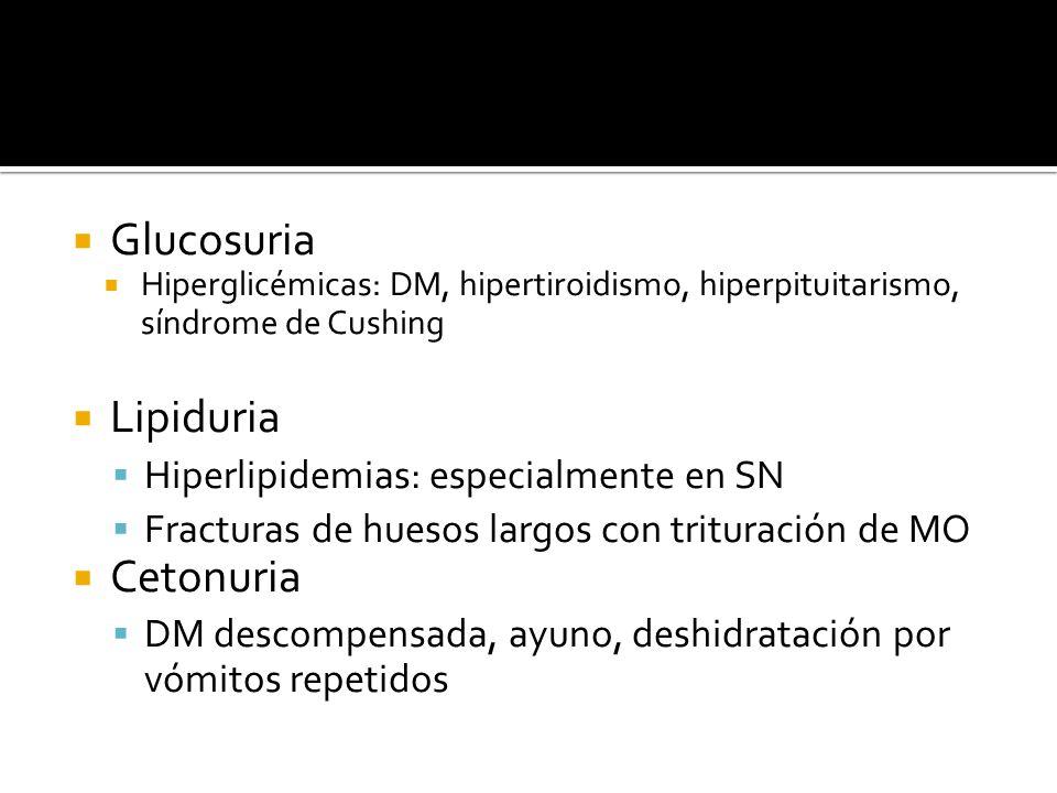 Glucosuria Lipiduria Cetonuria Hiperlipidemias: especialmente en SN