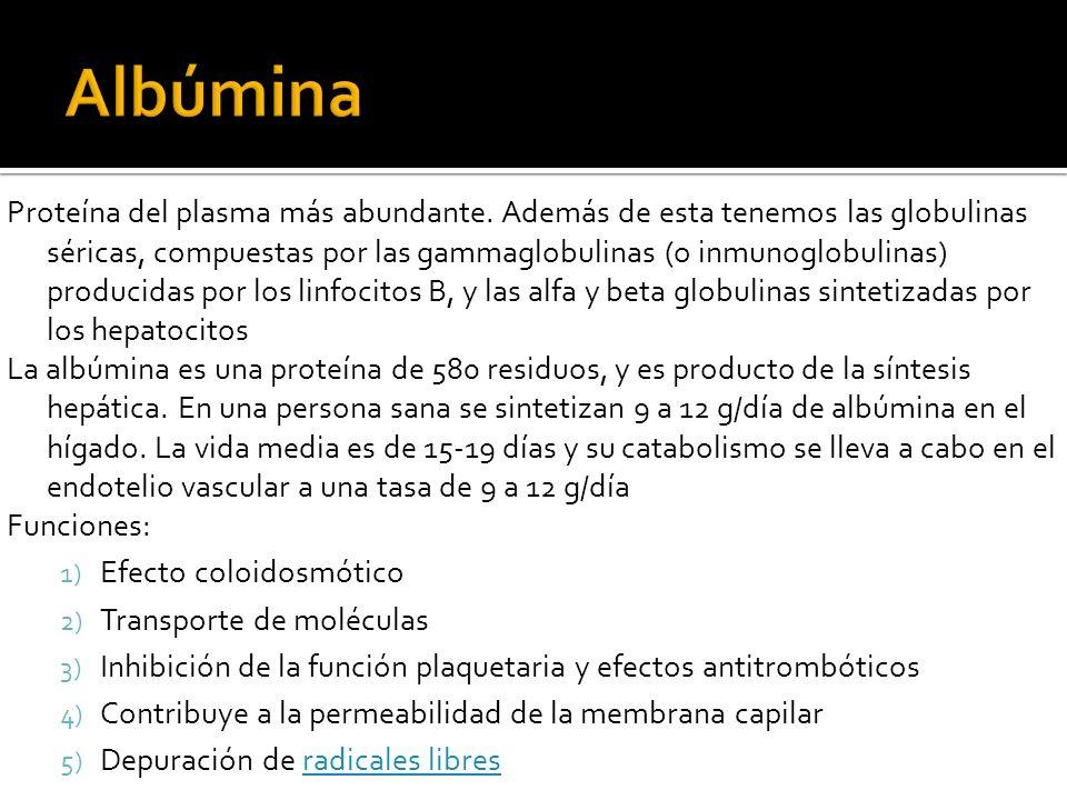 Albúmina
