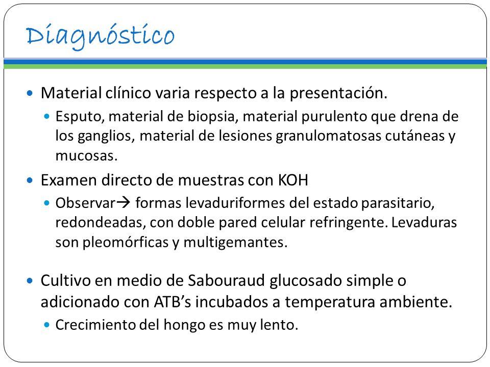 Diagnóstico Material clínico varia respecto a la presentación.