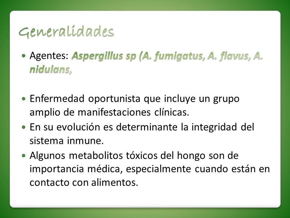 GeneralidadesAgentes: Aspergillus sp (A. fumigatus, A. flavus, A. nidulans,