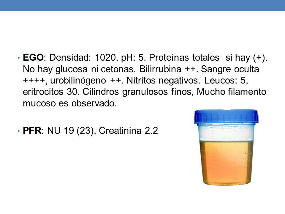 EGO: Densidad: 1020. pH: 5. Proteínas totales si hay (+)
