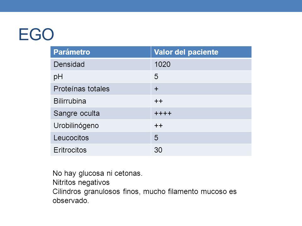 EGO Parámetro Valor del paciente Densidad 1020 pH 5 Proteínas totales