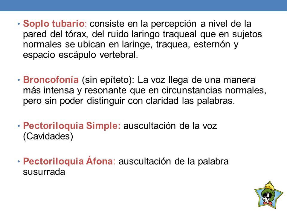Pectoriloquia Simple: auscultación de la voz (Cavidades)