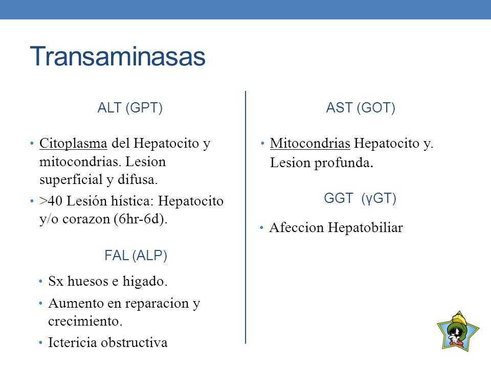 Transaminasas ALT (GPT) AST (GOT) Citoplasma del Hepatocito y mitocondrias. Lesion superficial y difusa.