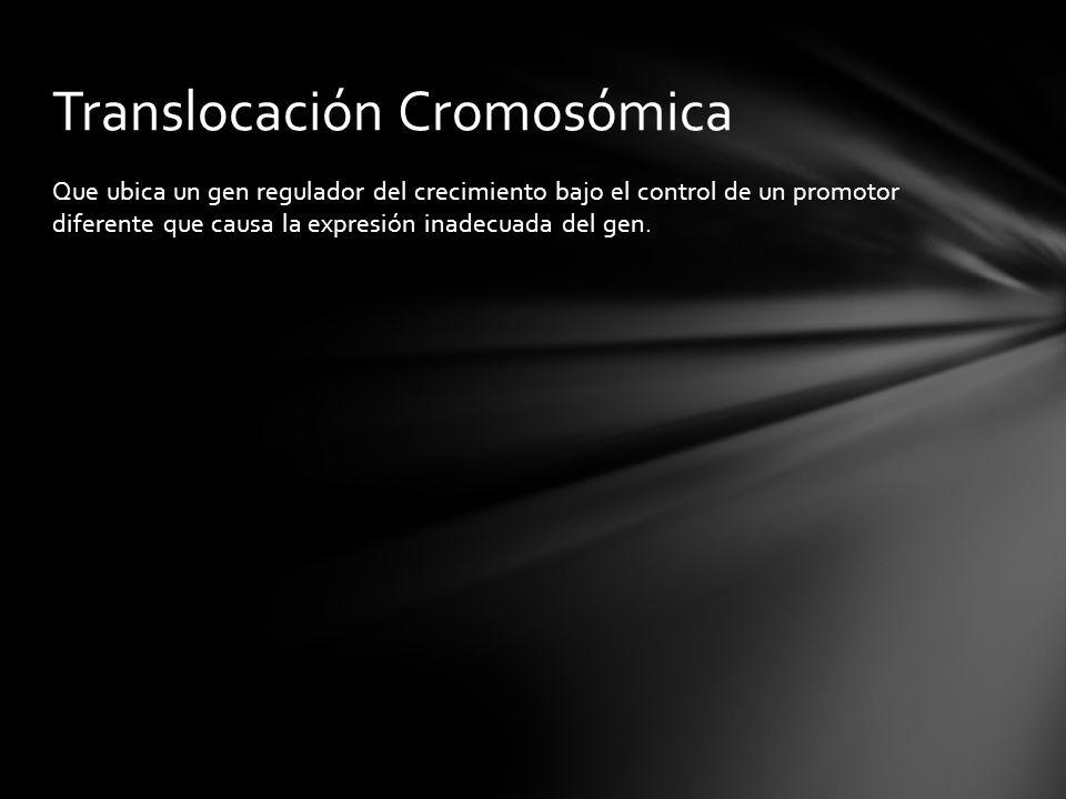 Translocación Cromosómica