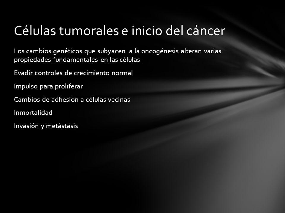 Células tumorales e inicio del cáncer