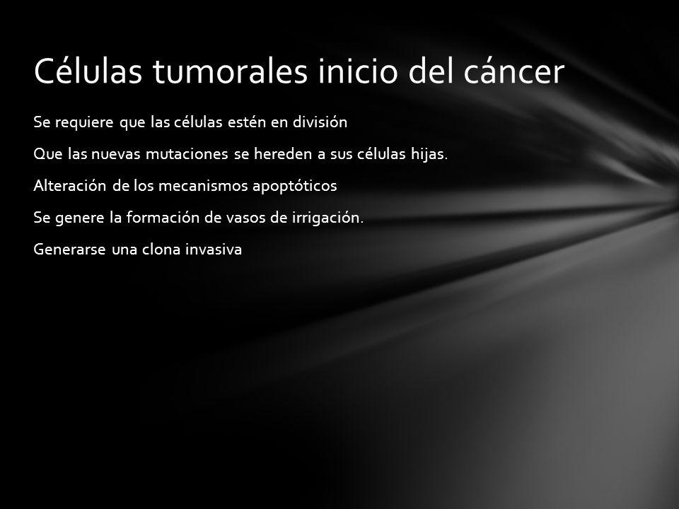 Células tumorales inicio del cáncer