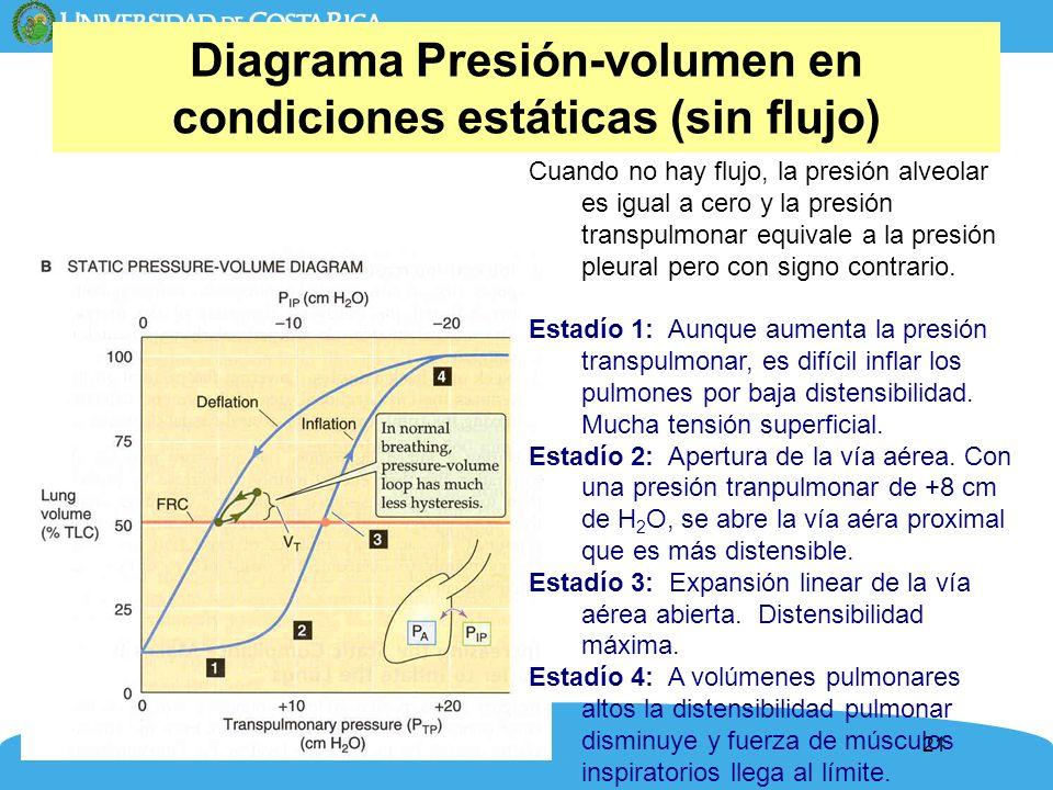 Diagrama Presión-volumen en condiciones estáticas (sin flujo)