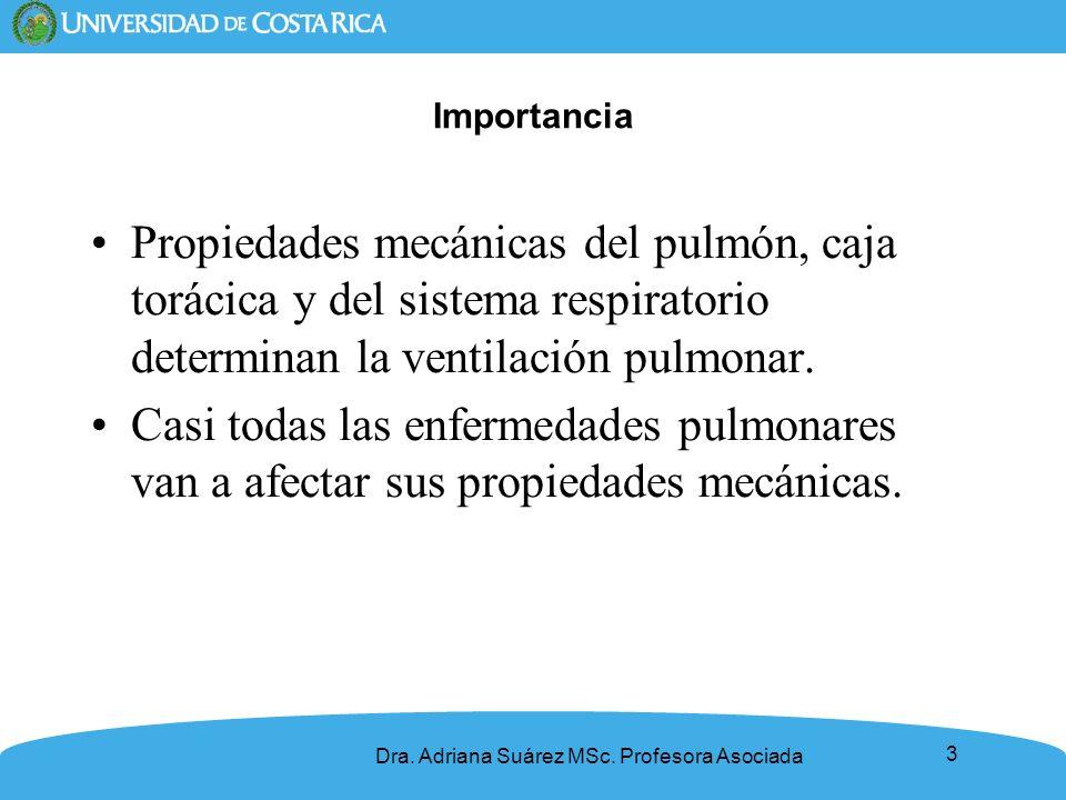 Importancia Propiedades mecánicas del pulmón, caja torácica y del sistema respiratorio determinan la ventilación pulmonar.