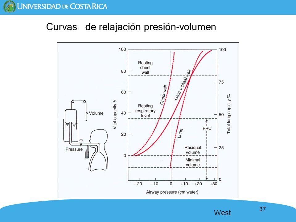 Curvas de relajación presión-volumen