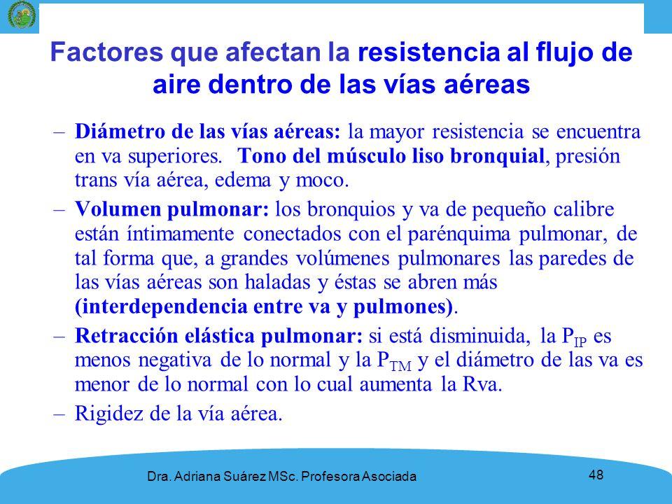 Propiedades dinámicas de los pulmones