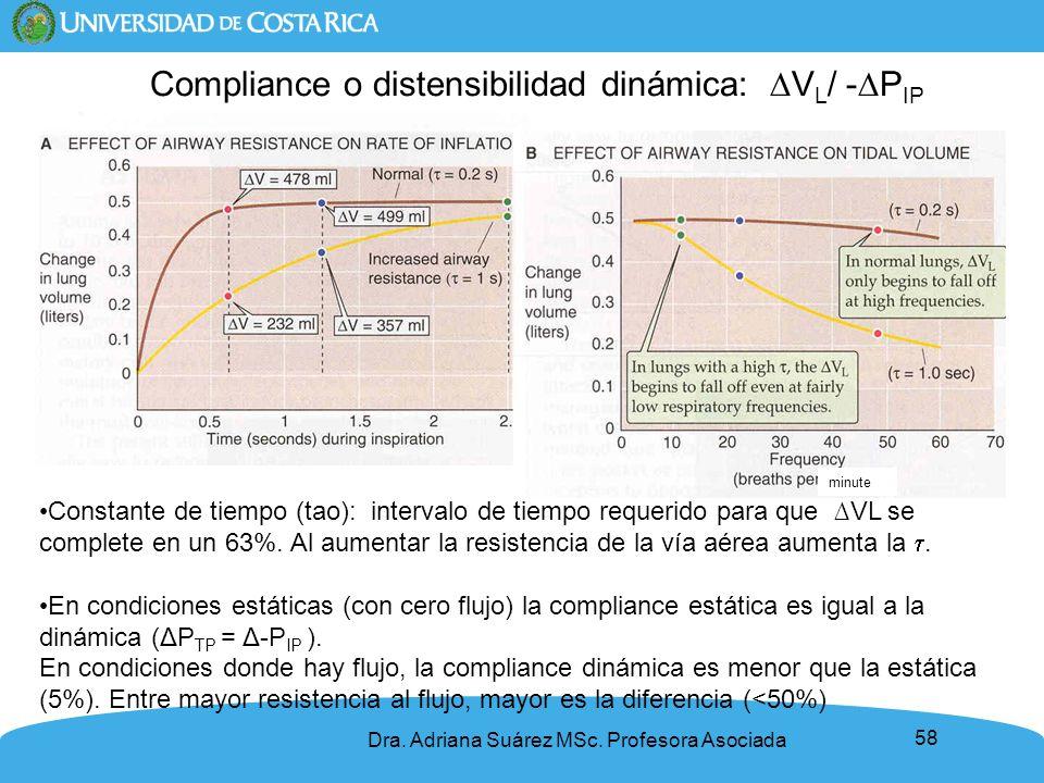 Compliance o distensibilidad dinámica: ∆VL/ -∆PIP