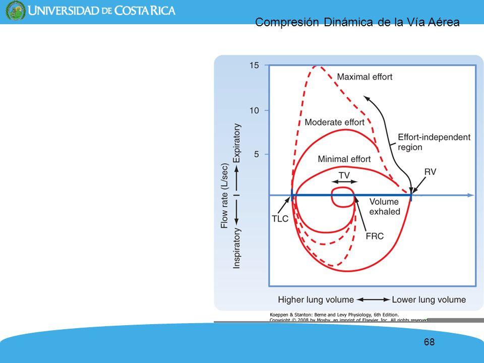 Compresión Dinámica de la Vía Aérea