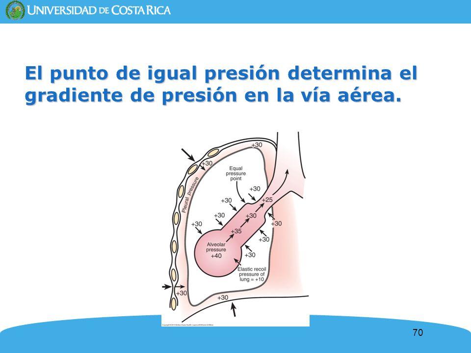 El punto de igual presión determina el gradiente de presión en la vía aérea.