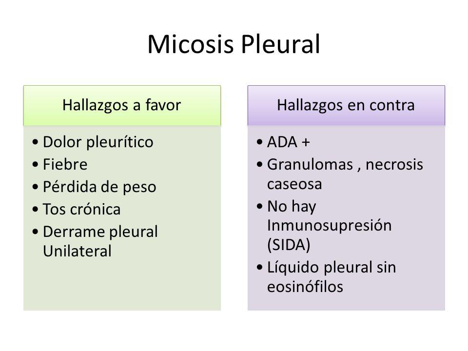Micosis Pleural Hallazgos a favor Dolor pleurítico Fiebre