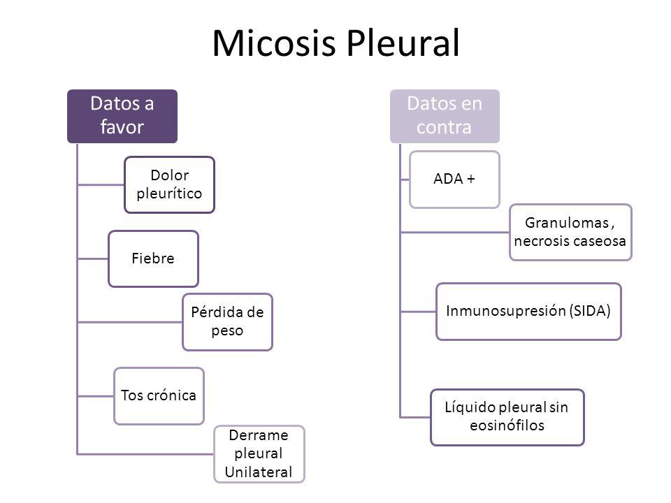 Micosis Pleural Datos a favor Datos en contra Dolor pleurítico ADA +