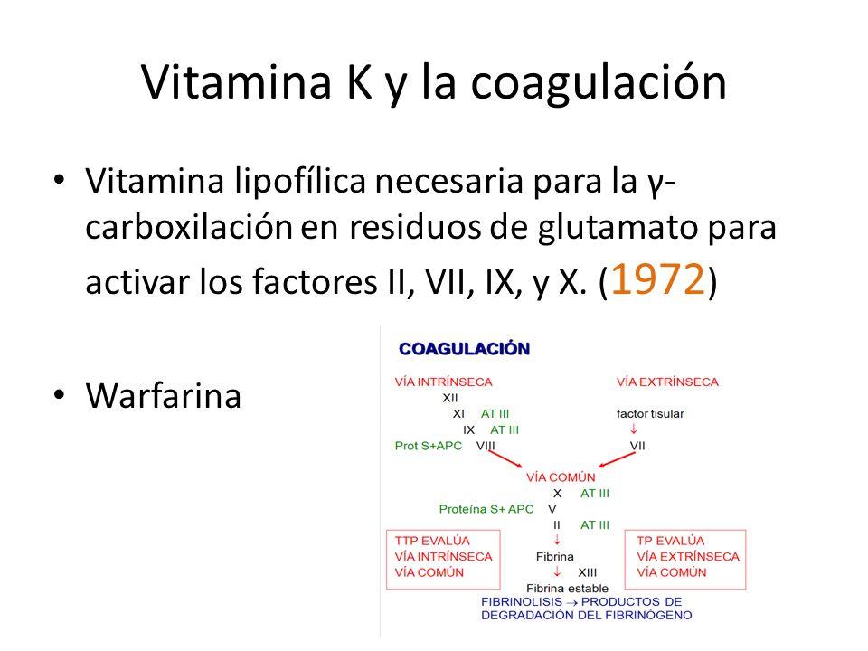 Vitamina K y la coagulación