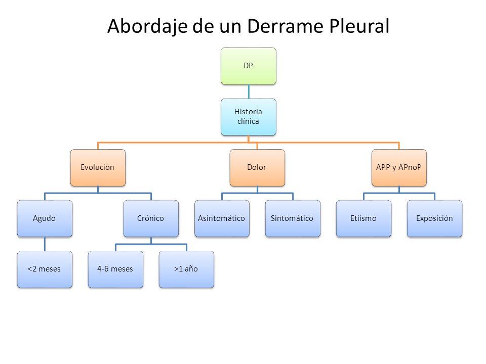 Abordaje de un Derrame Pleural