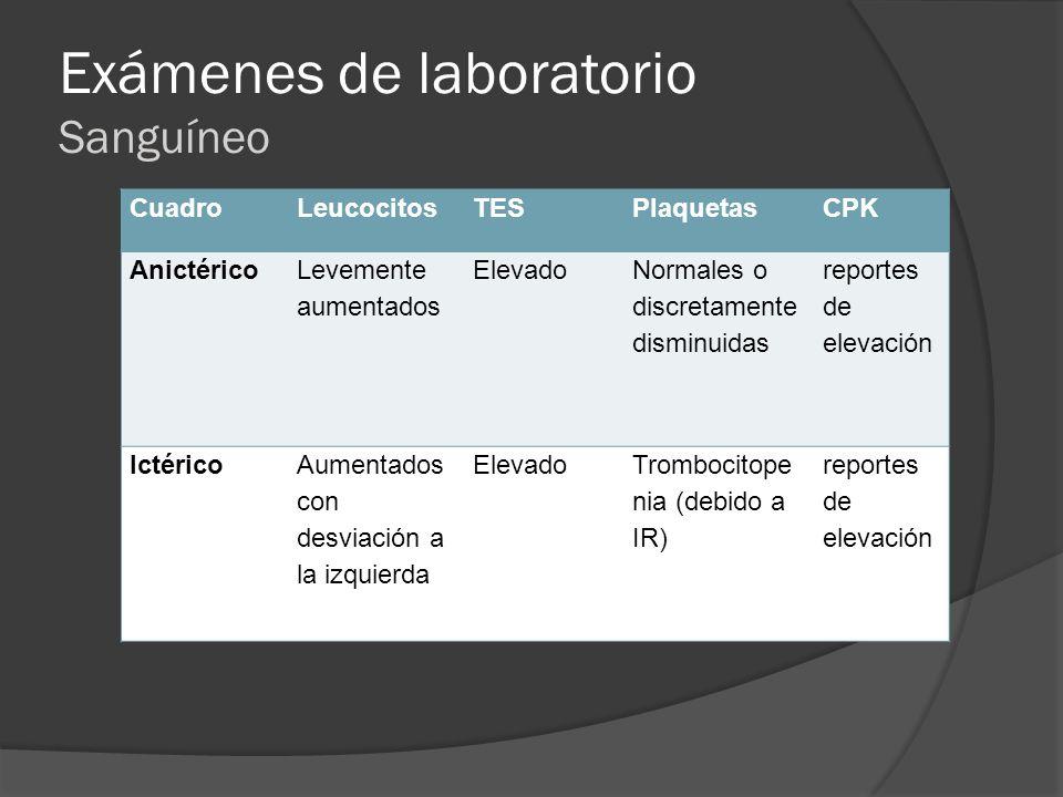Exámenes de laboratorio Sanguíneo