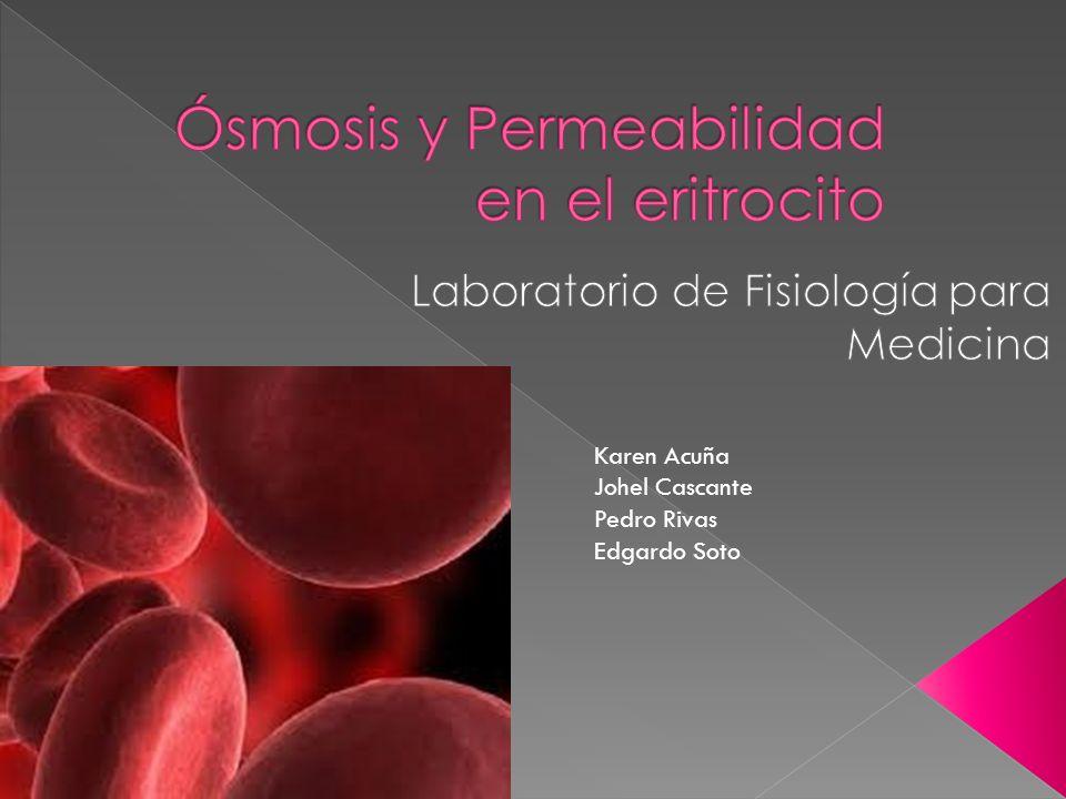 Ósmosis y Permeabilidad en el eritrocito