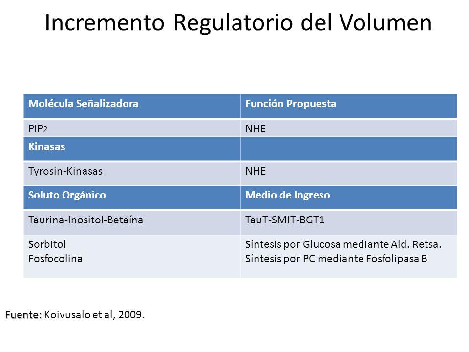 Incremento Regulatorio del Volumen
