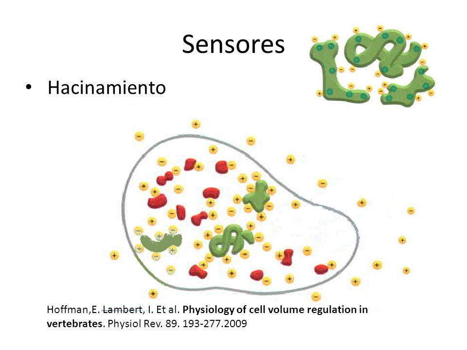 Sensores Hacinamiento