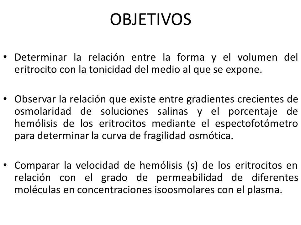 OBJETIVOSDeterminar la relación entre la forma y el volumen del eritrocito con la tonicidad del medio al que se expone.