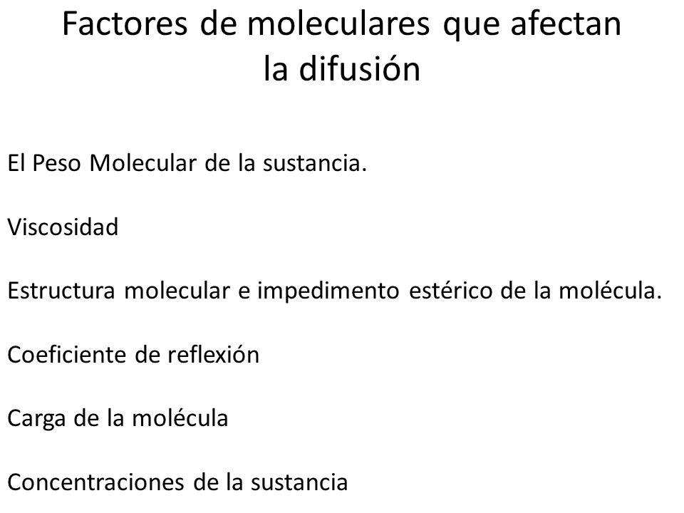 Factores de moleculares que afectan la difusión