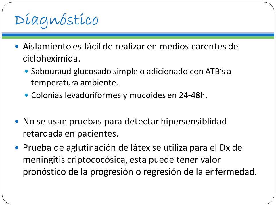 DiagnósticoAislamiento es fácil de realizar en medios carentes de cicloheximida.