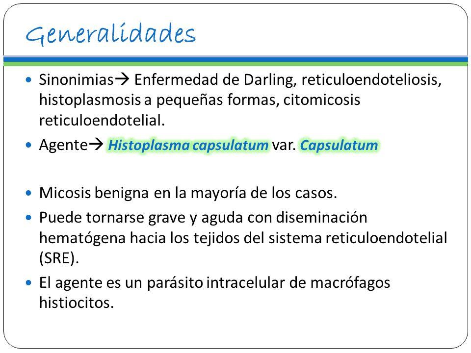 GeneralidadesSinonimias Enfermedad de Darling, reticuloendoteliosis, histoplasmosis a pequeñas formas, citomicosis reticuloendotelial.