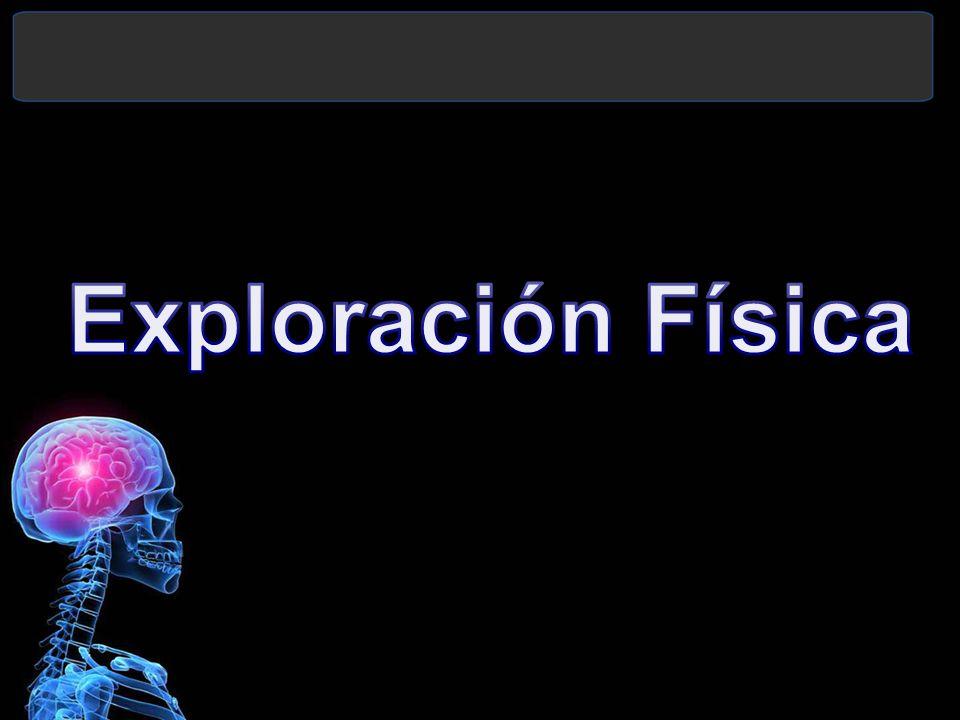 Exploración Física