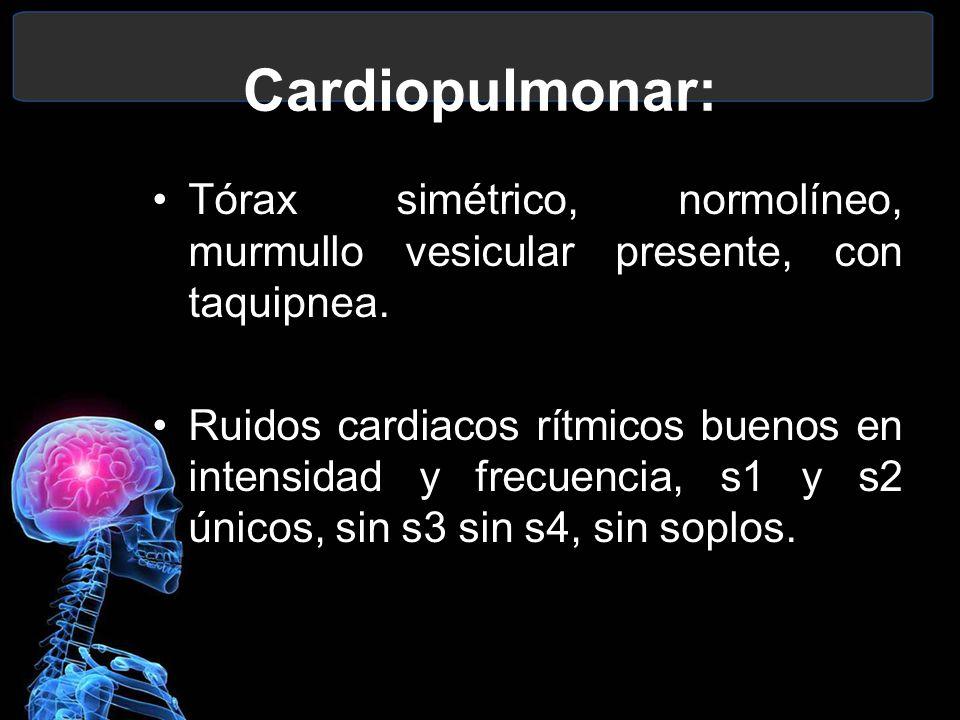 Cardiopulmonar: Tórax simétrico, normolíneo, murmullo vesicular presente, con taquipnea.