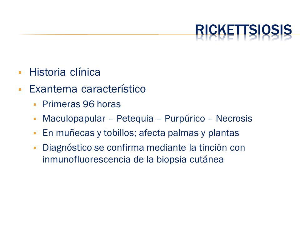 Rickettsiosis Historia clínica Exantema característico