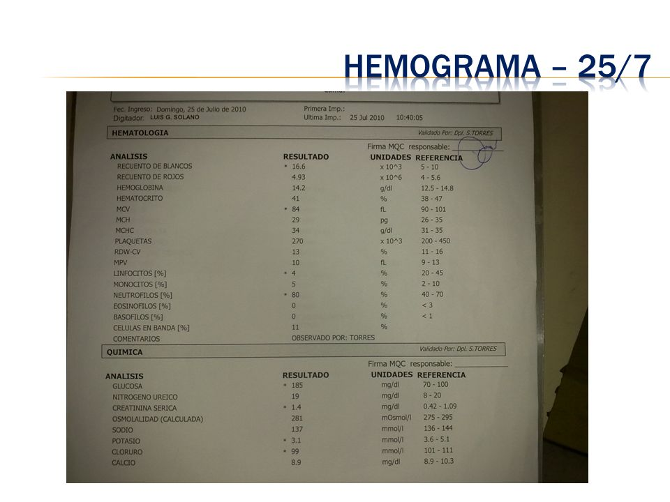 Hemograma – 25/7