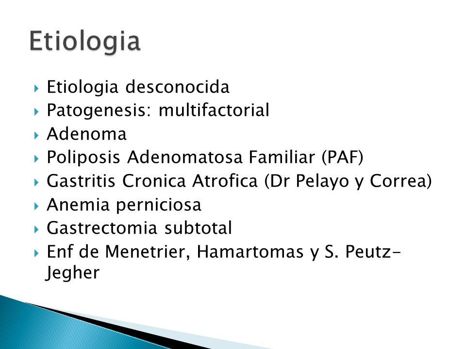 Etiologia Etiologia desconocida Patogenesis: multifactorial Adenoma