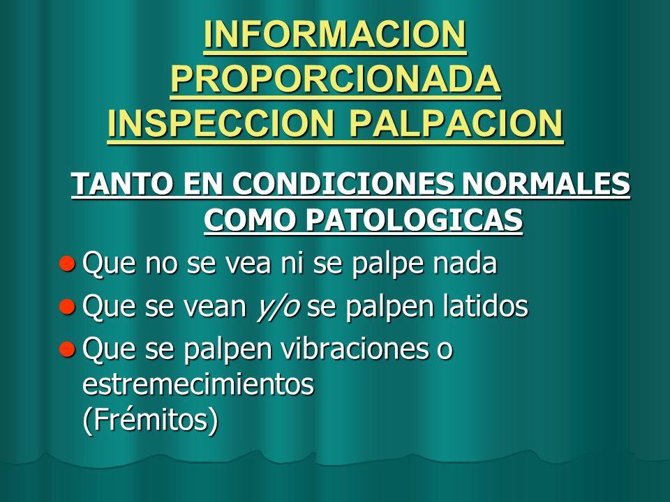 INFORMACION PROPORCIONADA INSPECCION PALPACION