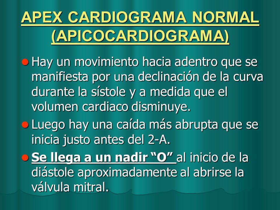 APEX CARDIOGRAMA NORMAL (APICOCARDIOGRAMA)