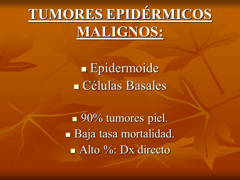 TUMORES EPIDÉRMICOS MALIGNOS: