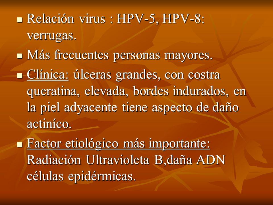 Relación virus : HPV-5, HPV-8: verrugas.