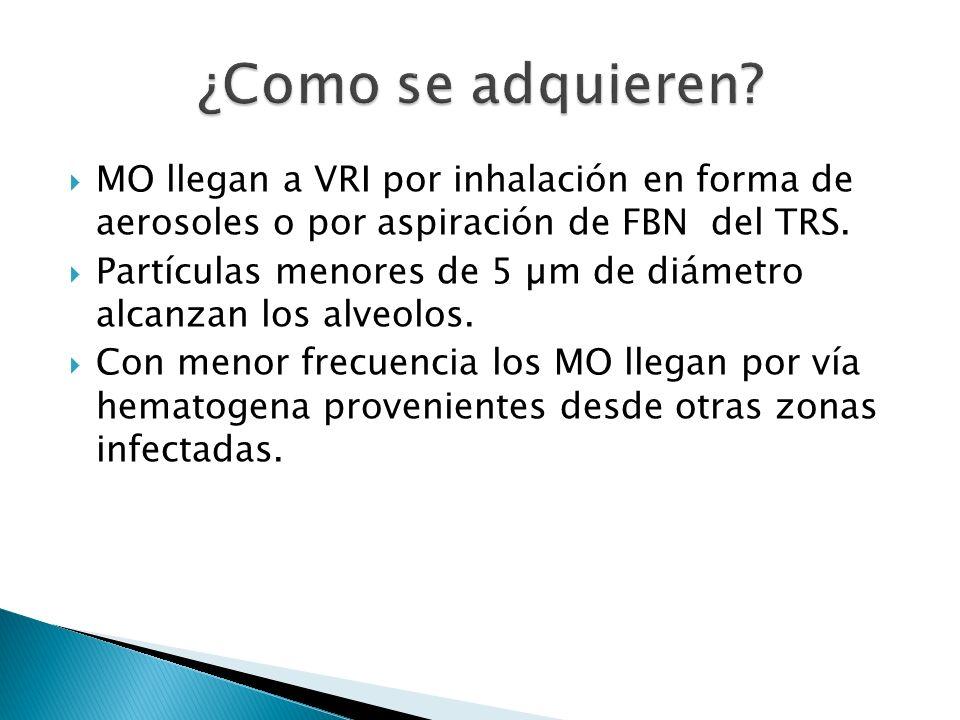 ¿Como se adquieren MO llegan a VRI por inhalación en forma de aerosoles o por aspiración de FBN del TRS.