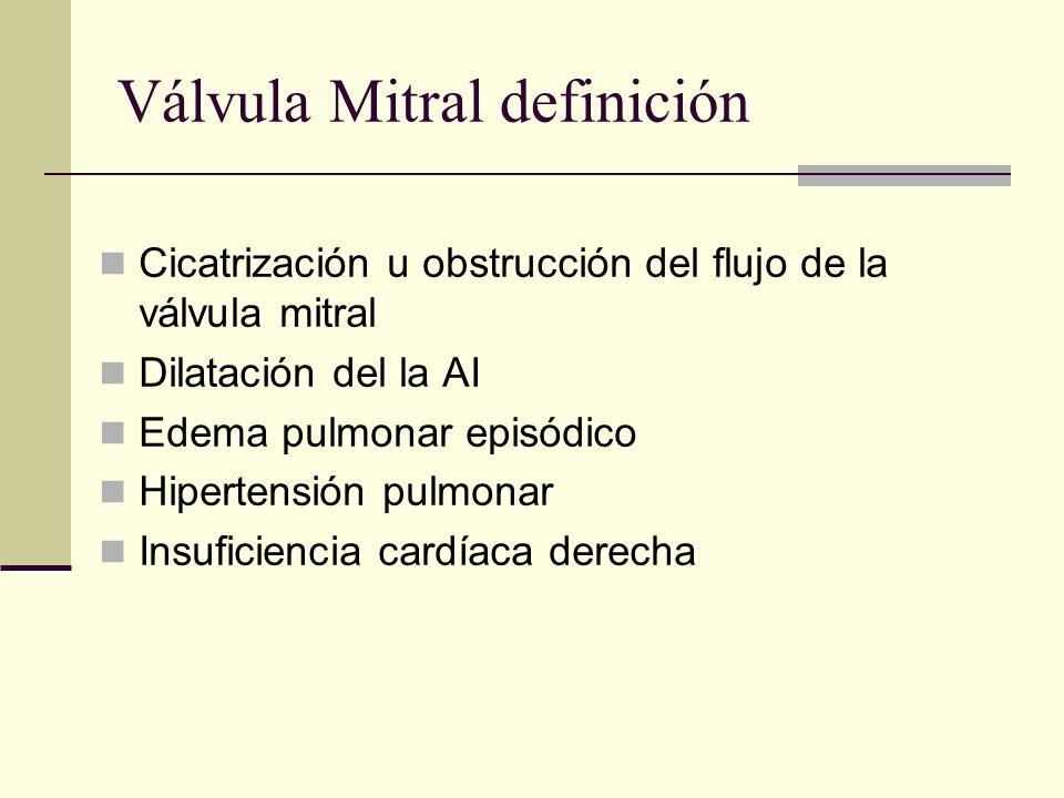 Válvula Mitral definición
