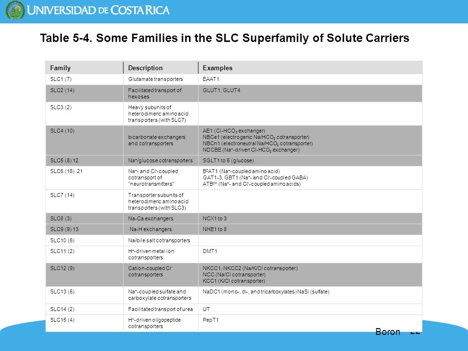 Table 5-4. Some Families in the SLC Superfamily of Solute Carriers