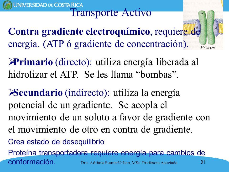 Transporte Activo Contra gradiente electroquímico, requiere de energía. (ATP ó gradiente de concentración).
