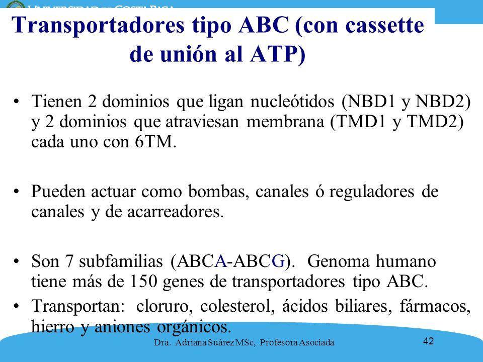 Transportadores tipo ABC (con cassette de unión al ATP)