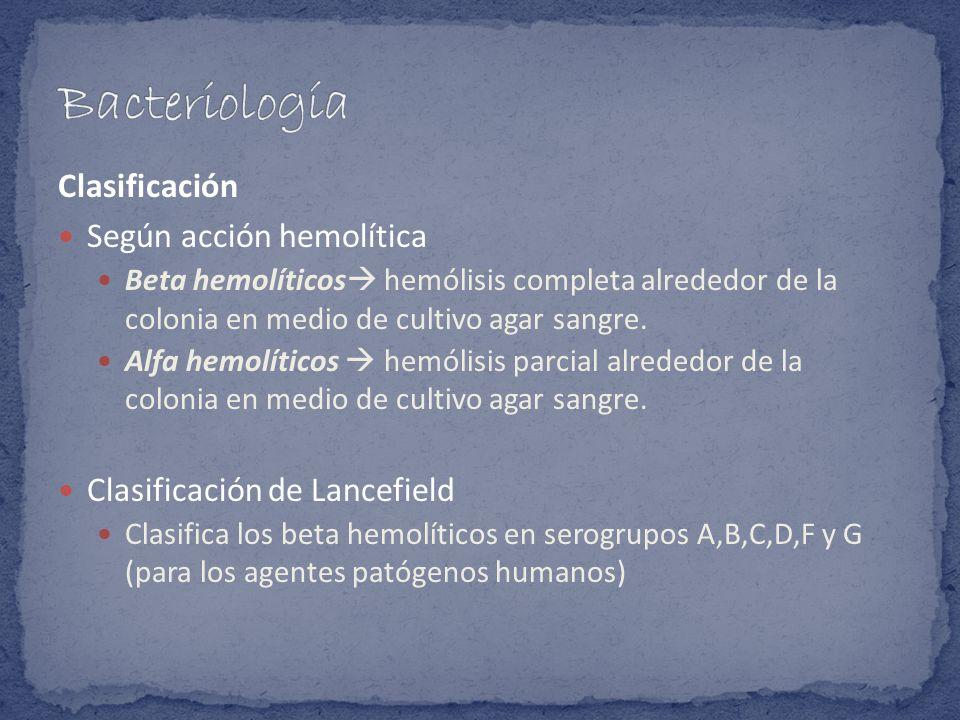 Bacteriología Clasificación Según acción hemolítica