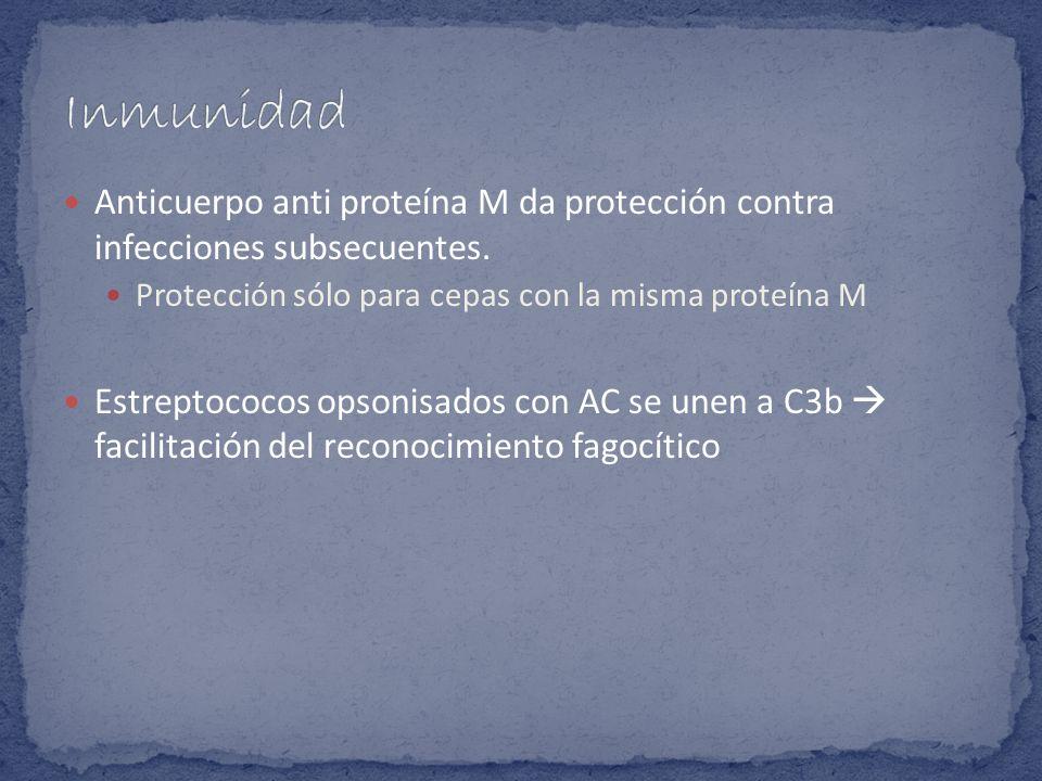 Inmunidad Anticuerpo anti proteína M da protección contra infecciones subsecuentes. Protección sólo para cepas con la misma proteína M.