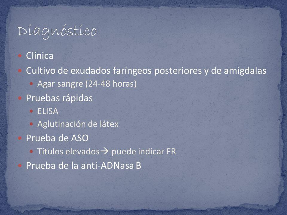 DiagnósticoClínica. Cultivo de exudados faríngeos posteriores y de amígdalas. Agar sangre (24-48 horas)