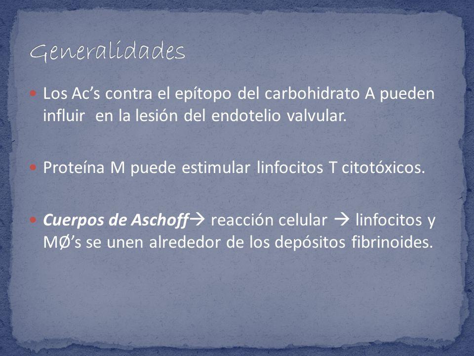 Generalidades Los Ac's contra el epítopo del carbohidrato A pueden influir en la lesión del endotelio valvular.